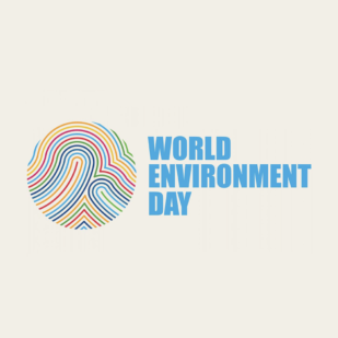 What World Environment Day Means for Sustainable Packaging